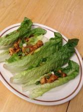 Jeremy - Asian Citrus Chicken Wraps 1