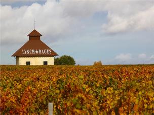 Chateau Lynch Bages vineyard